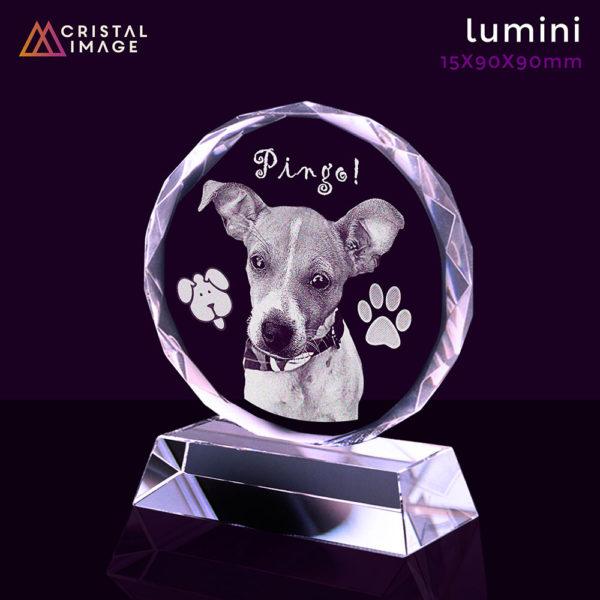 lembrança-cachorro-vidro